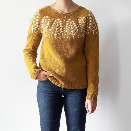 Modele tricot pull Pins