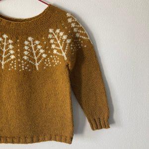 Modèle tricot pull Pins